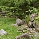 Seterminne langs skogsbilveiens kant