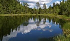 Karussputten2008