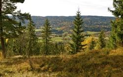 VESTOVER mot Lommedalens bondeland.
