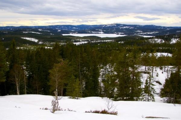 GLØD. Utsikten fra Glotjernkollen nordover mot Helgeren og Nordmarka. Foto: VESLE-BERNHARD