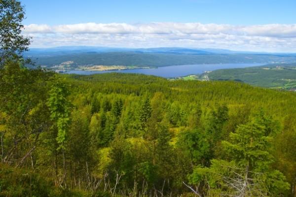 DET LAMANNEN SER. Ved den forbløffende utsikt over Randsfjorden med mer. Foto: VESLE-BERNHARD