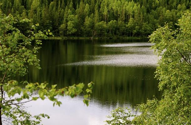 Abbortjern nord for Storflåtan