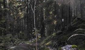 KEINE ANGST. Den trygge bro oer den mørke bekk. Foto: EILIF EGGEN