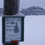 En oversett plett på Bjørnsjøens bredde