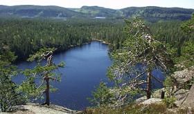 På tvers. Fra Tverråsen ser man kremen av Finnemarka. Foto: STEIN BOTILSRUD
