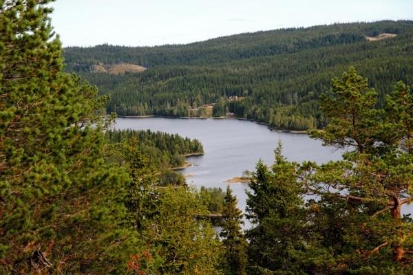 MØØ. Sommerutsikt fra Kusteinkollen mot nordøst og strøket henimot Heggelia.
