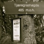 Til Tjæregravshøgda og Bærumsmarkas tak