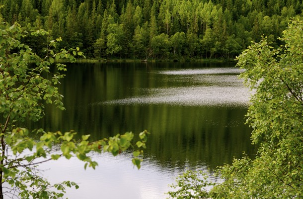 Sommerkveldstur til Store Åbortjern