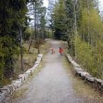 En herderskronet vei til Bergen