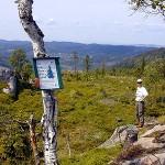 På det ensomme Bjørgesæterfjell
