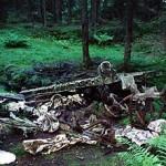 Krigsflyvraket i Hansakollen