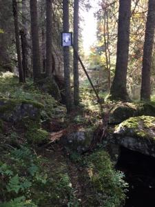 Post 21 bekkeløpet N Grimstjernputten