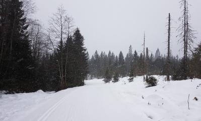 KM 18 4 1